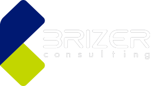 Brizer Consulting